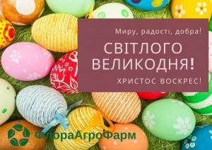 Світлого Великодня!!!